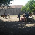 equitazione_-01